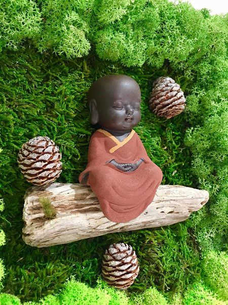 Buddha Moss Arts. Green Preserved Moss. Dry Flowers. Moss decoration. Moss in frame. Buddha Statues amazon