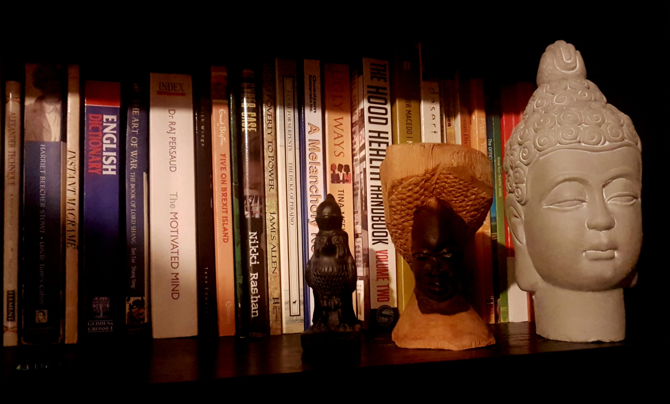 book collection lockdown buddha african rebeljewel rebel jewel